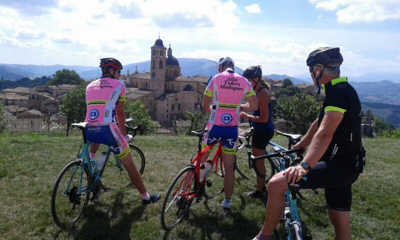 Alexander bike _ Urbino